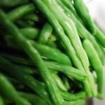 いんげん豆はプランターで育てられる?いんげん豆の育て方について