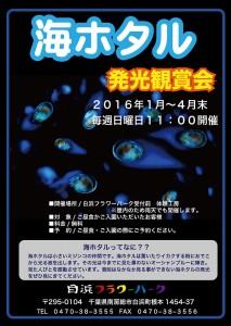 引用元:http://flowerpark.awa.jp/winter/event/umihotaru.html#top