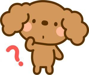 疑問を感じる犬