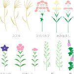秋の七草の意味とわかりやすい覚え方は?名前と種類について