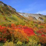 北海道大雪山の紅葉2016見頃は?ロープウェイで気軽に楽しめる