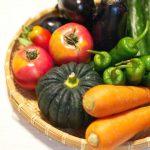 そうめんかぼちゃの茹で方や保存方法は?おいしい料理のレシピまとめ
