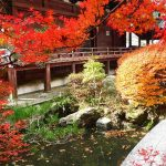 毘沙門堂の紅葉2016の見頃やライトアップはある?京都の穴場スポット
