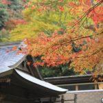 清水寺の紅葉2016の見頃やライトアップの期間は?お勧めのお土産3選