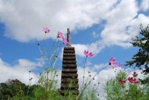 十三重の石塔とコスモス