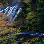 袋田の滝の紅葉2016年の見頃やライトアップはある?グルメ情報