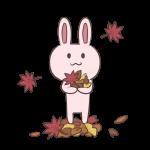 東山動物園の紅葉2016見頃やライトアップの期間は?駐車場はある?