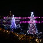 東武動物公園イルミネーション2016の期間や点灯時間は?料金はいくら?