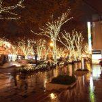 表参道クリスマスイルミネーション2016の開催期間や点灯時間は?