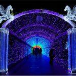 天王寺公園イルミネーション2016の期間や点灯時間は?混雑状況と回避方法
