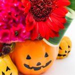 かぼちゃと花